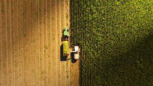 La strategia europea di bioeconomia: impatti e scenari, opportunità e rischi
