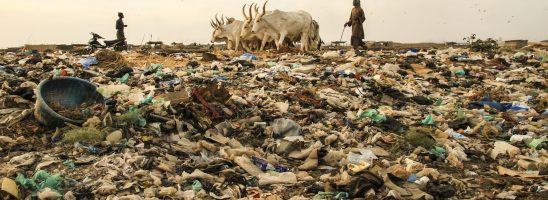 La scienza che tutela ambiente e salute non ha santi in paradiso